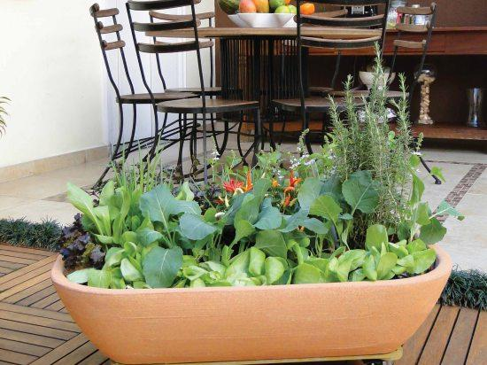 kitchen-garden-planter-jackson-pottery.jpg
