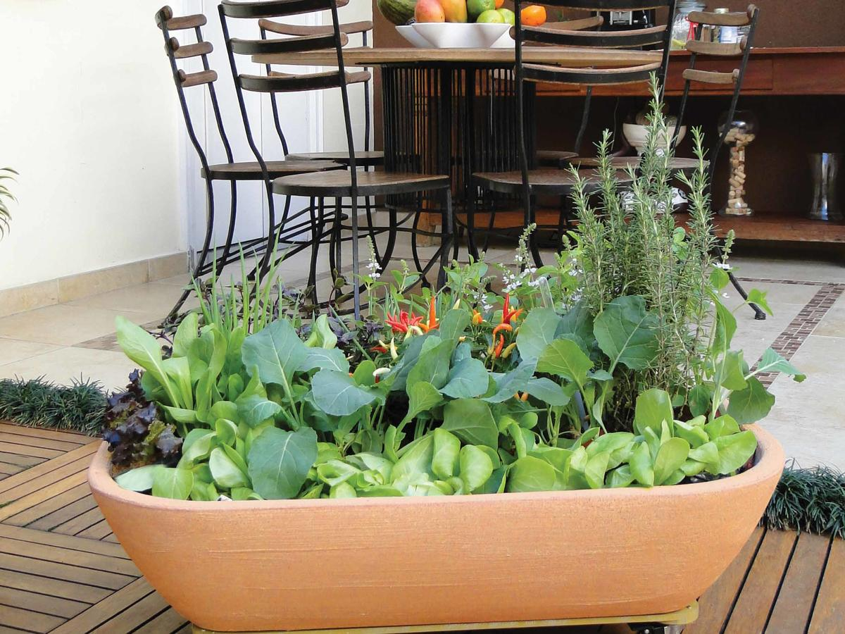 kitchen-garden-planter-jp.jpg