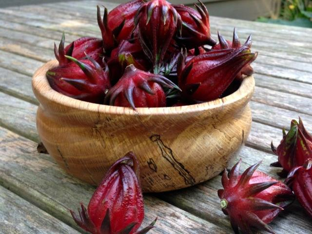 roselle-harvest-mary-beth-shaddix.jpg