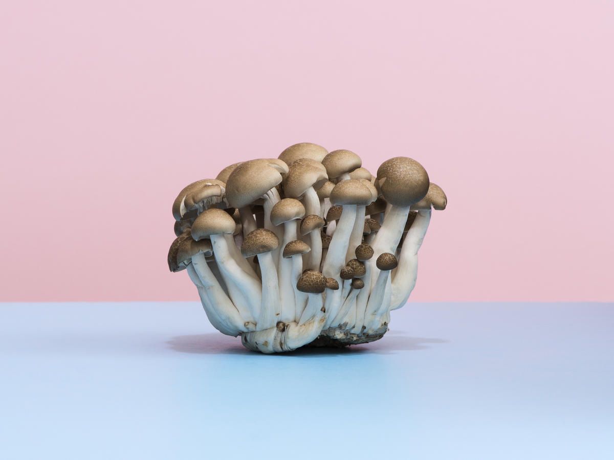 Are Mushrooms Healthy? Here's What Experts Say