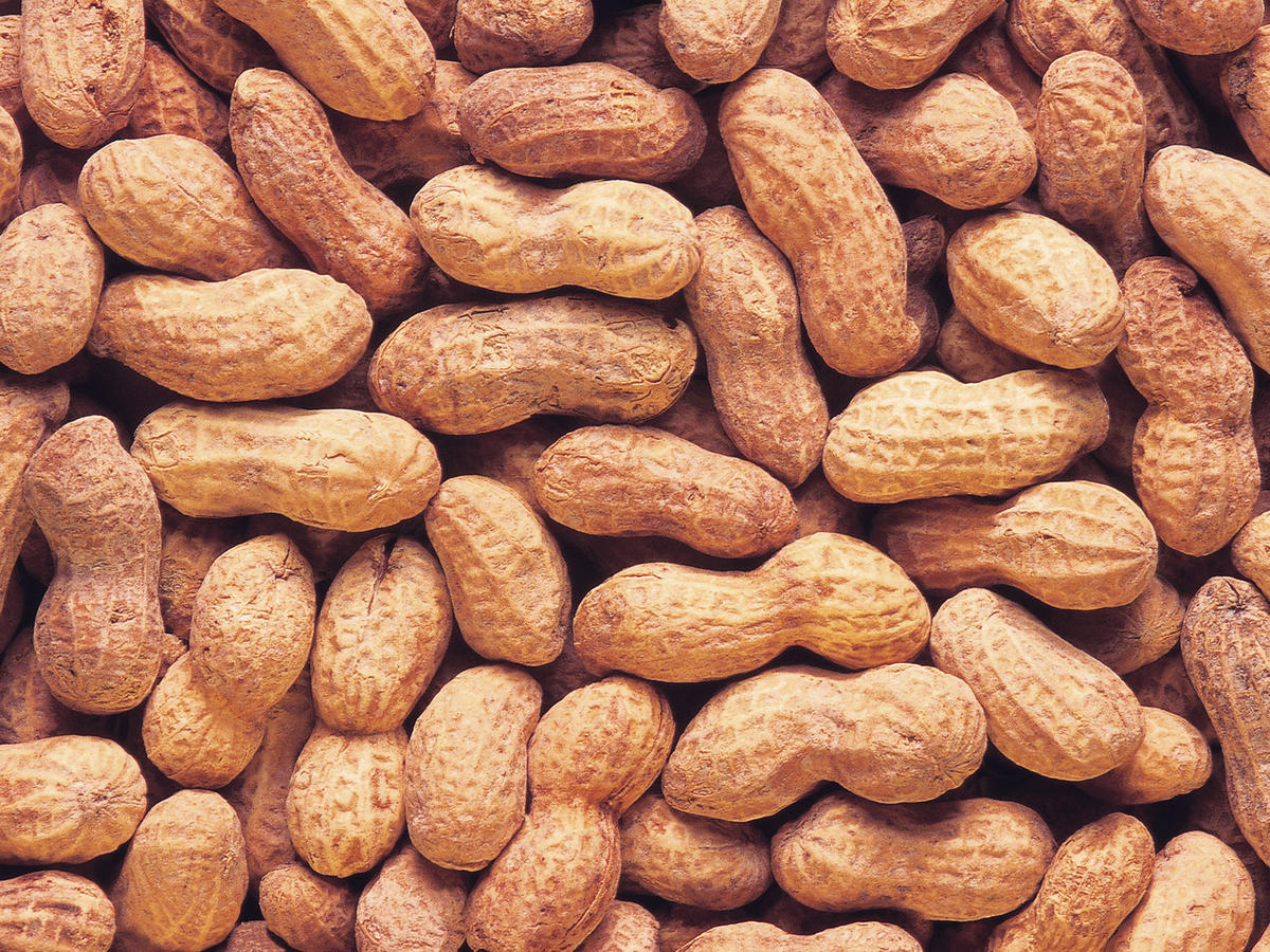 Food Allergies vs. Intolerances: What's the Difference?