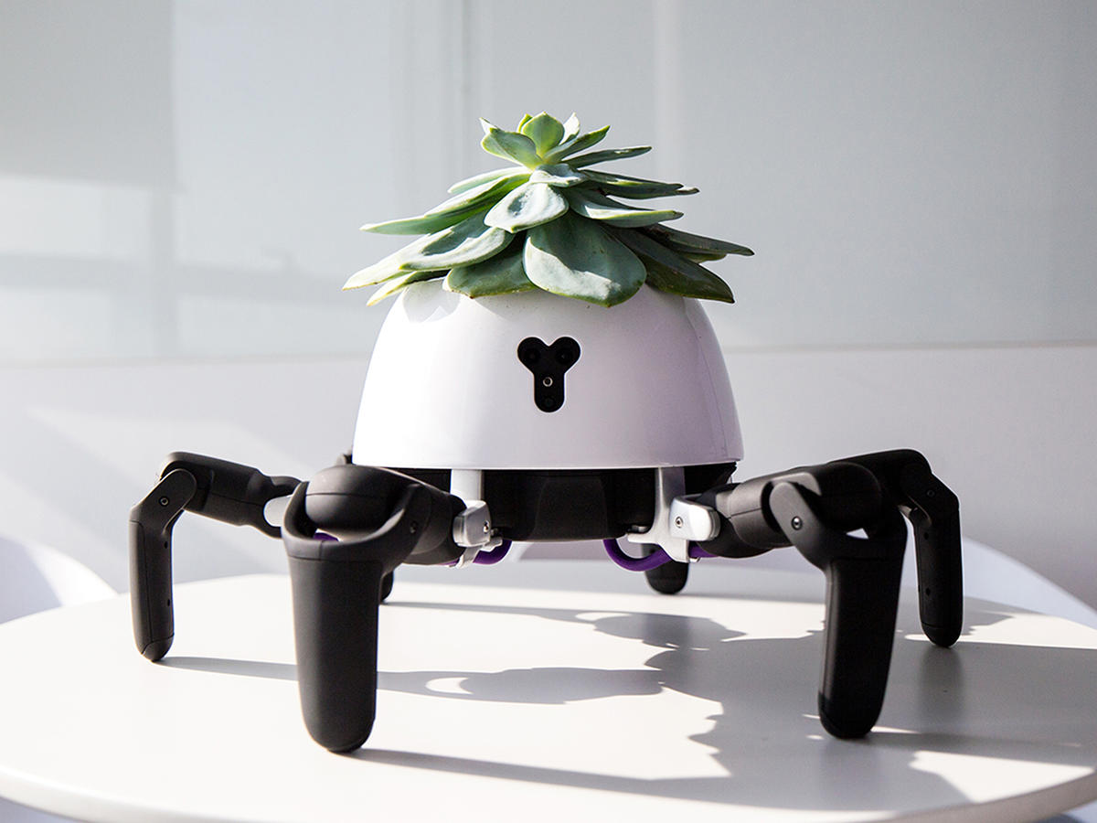 This Robot Planter Follows the Sun to Keep Your House Plants Alive