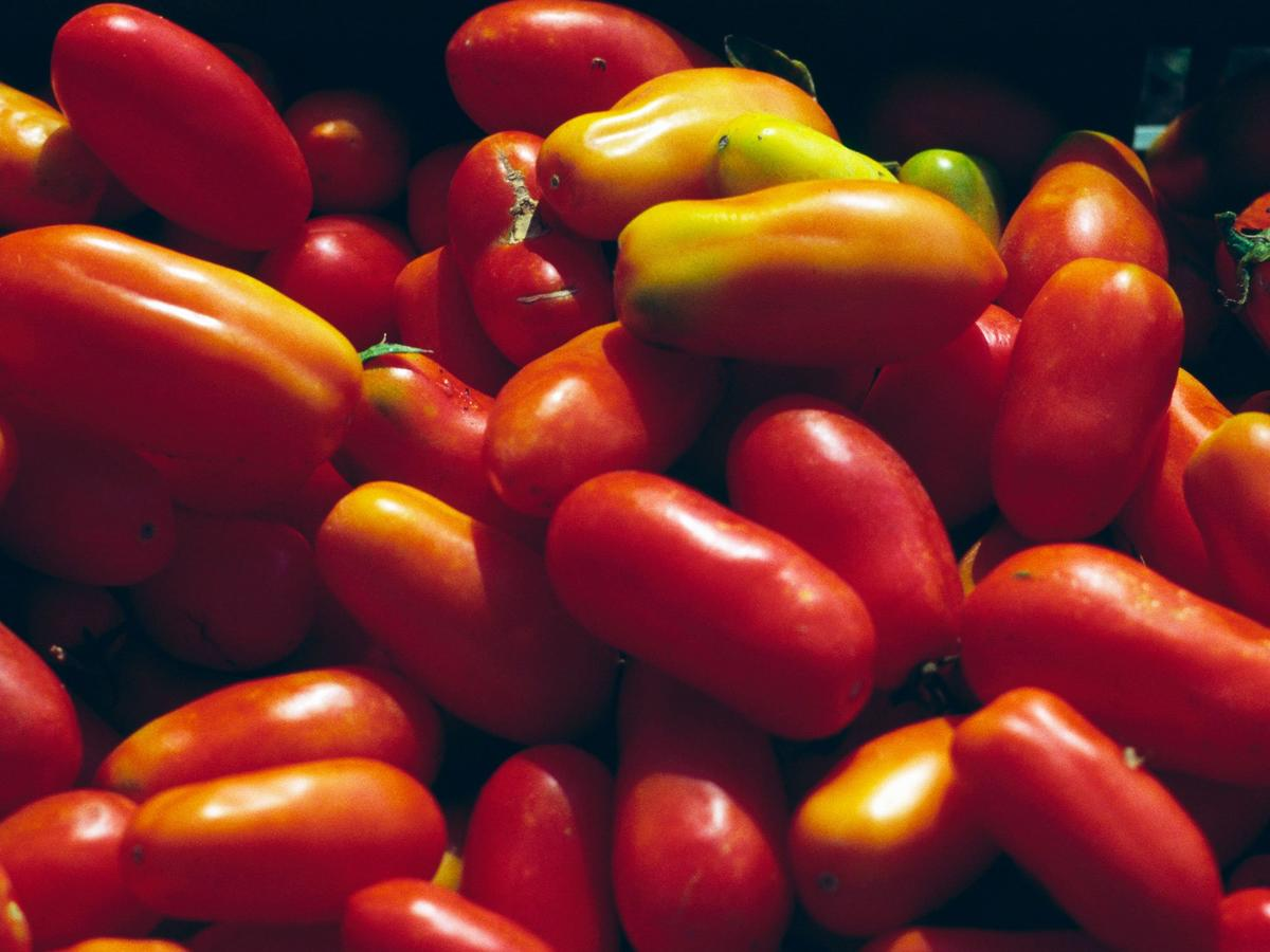 Your San Marzano Tomatoes Are Probably Fake