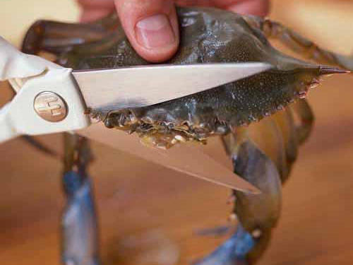 Cleaning Soft-Shell Crabs