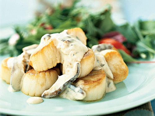 Scallops in Champagne Sauce