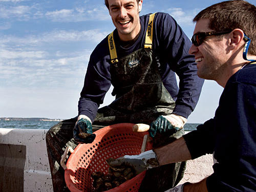 Barton Seaver's Advocacy for Sustainable Seafood