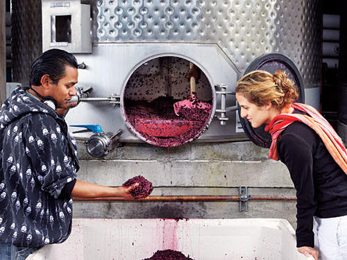 Once the grapes are crushed, they're placed in fermentation tanks that are carefully monitored as the grapes convert their sugars into alcohol. No outside yeasts are introduced. When ready, the tanks are drained and solids are pressed. Once settled, the wine will drain into barrels.
