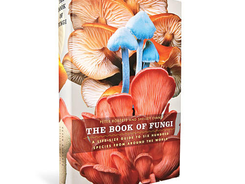 The Book of Fungi by Peter Roberts and Shelley Evans