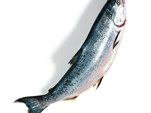 What to Eat Right Now: Pacific Salmon