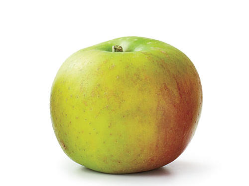 Ashmead's Kernel Apple Types