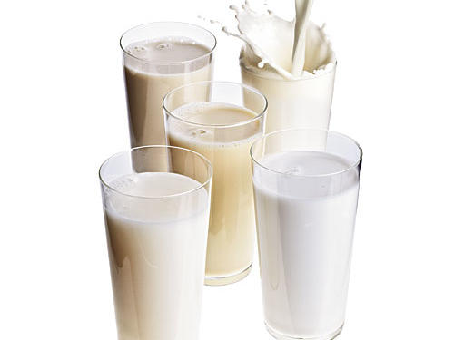 Meet the Milk Substitutes