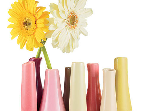 Every month our editors pick the latest and greatest gadgets, home décor, and giftable goodies. Now we offer exclusive discounts on some of these finds from participating vendors. This month's deals are available for a limited time. Get the deals while they last!Totally tubular vase holds eight stems ($28, chive.com).EXCLUSIVE DEAL: Use promo code ILOVECHIVE for a 10% discount.Discounts available from December 26, 2011, to February 26, 2012, or while supplies last.