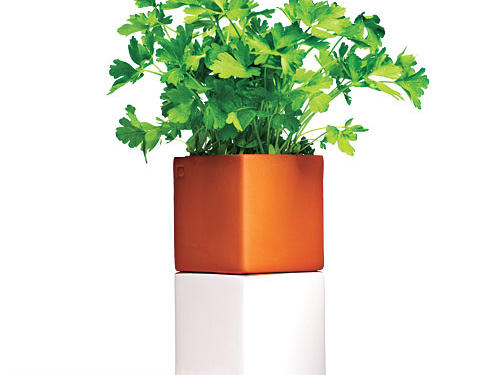 How does your windowsill garden grow? Practically care-free with Cult Design's self-watering planter ($30, abode-newyork.com).*This product will be available mid-May.