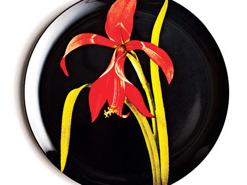 Dramatic black offsets beautiful blooms on florilegium plates ($36/set of 4, 2modern.com). EXCLUSIVE DEAL: Use code COOKINGLIGHT10 for a 10% discount.Discounts available from April 9 to June 9, 2012, or while supplies last.