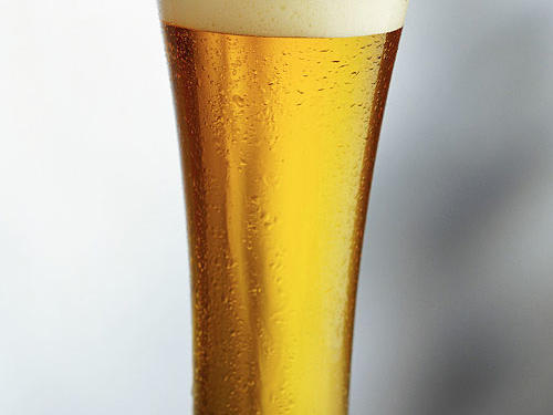 Pilsners are light, clear, crisp lagers that can have a malty citrusy taste.Color: Light yellow to golden, clearTaste: Clean, crisp, citrusy, highly-carbonated, mildAlcohol: 4-5%