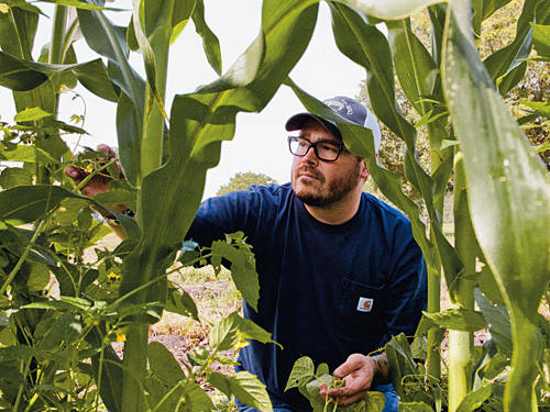 Chef Sean Brock