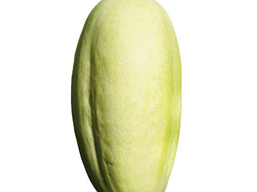 Also known as Albino, Ivory King, and Jack Frost, this cucumber is distinguished by its pale skin. Harvest young for thinner skin and crisp flesh.