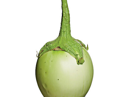 Apple Green Eggplant