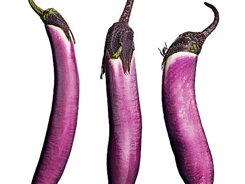 Similar to Ichiban Japanese eggplant, these are a great size and shape for grilling. They also work well in stir-fries. The plants are highly bountiful.