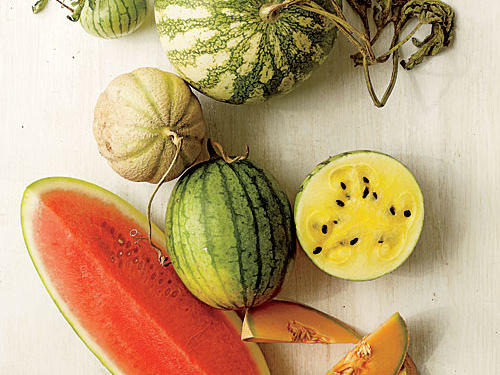 Our Favorite Melon Varieties