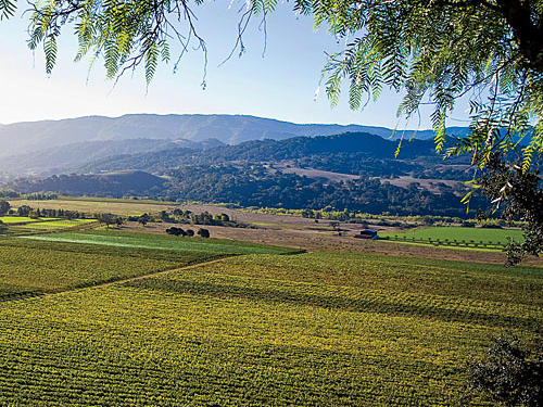 The Santa Margarita Hills lured gold miners. Today, it's wine and cheese lovers. Take a food adventure and explore Central California and the Santa Ynez Valley.Read more: Central California Farm Stays