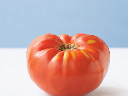 This tomato is an excellent multipurpose beefsteak variety. Although it's difficult to verify exact origin, some experts speculate that it was first cultivated by the Amish more than a century ago. This fruit is grown in yellow, red, pink, and purple-fleshed varieties. With a classic tomato taste, the classic red Brandywine is full-flavored with a pleasant acidity, a floral aroma similar to roses, and a supple buttery texture.