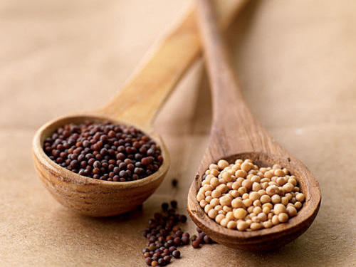All About Mustard Seeds