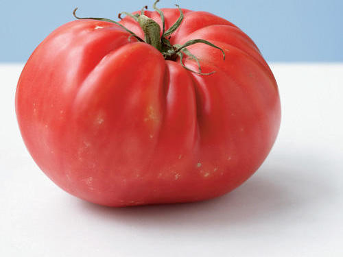 This pink-fleshed beefsteak was originally bred by a radiator repairman from West Virginia in the 1930s. Seedlings of the tomato were sold for $1 each, paying off his $6,000 mortgage in six years. This tomato can tip the scale at two pounds. It's also known for mild, sweet flavor.