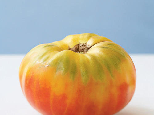 A pale yellow tomato with pinkish-orange blush, and occasionally, green stripes, Mr. Stripey is a delicate beefsteak with low acid content that allows its sweetness to shine. The flavor boasts notes of melon, and the firm skin provides a nice contrast to the tender flesh when eaten raw.