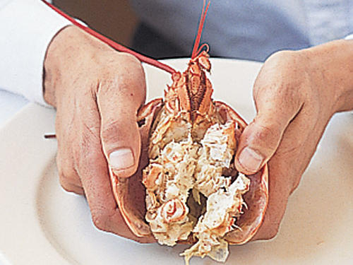 Extracting Lobster Meat: Crack Body Open