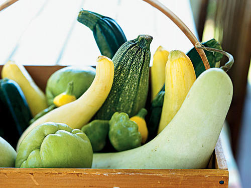 Unlike winter squashes, such as butternut or acorn, summer squash has edible skin and seeds. The most common summer varieties are yellow squash (also called crookneck), pattypan squash, and zucchini. Whether you're gathering them from the backyard or from the supermarket produce bins, choose small, firm squashes with bright-colored, blemish-free skins.Recipes: • Summer Squash, Bacon, and Mozzarella Quiche• Grilled Summer Squash• Summer Squash Croquettes• Mixed Greens Salad• Potato Salad with Herbs and Grilled Summer Squash