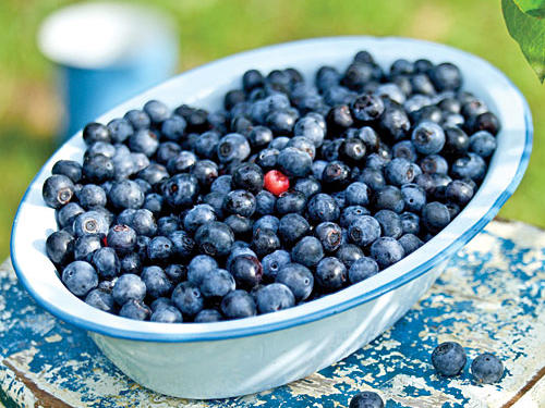 Of all the popular summer fruits, blueberries have an advantage, nutritionally speaking. They've earned the distinction of one of the most potent source of antioxidants, which help counteract heart disease, cancers, and other types of illnesses. Blueberries are also full of fiber and high in vitamin C. To pick the best of the crop, look for powder-blue berries that are firm and uniform in size. Store them in a single layer, if possible, in a moisture-proof container for up to five days, and don't wash until you're ready to use them.Recipes: • Blueberry Thrill • Fresh Blueberry Sauce • Gingered Blueberry Shortcake• Blueberry-Orange Parfaits• Late-Harvest Riesling Sorbet with BerriesSee More: Blueberry Desserts