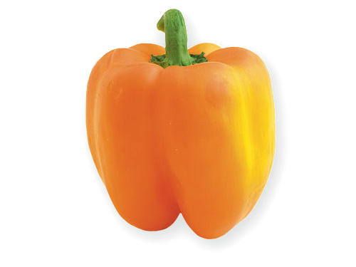 Bell Pepper Serving Size