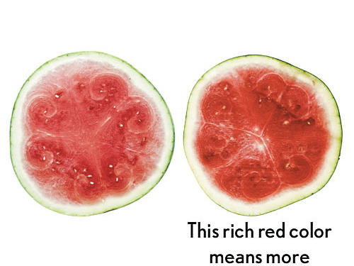 You refrigerate watermelon as soon as you buy it