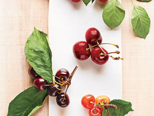 Guide to Cherries