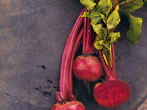 Guide to Beets