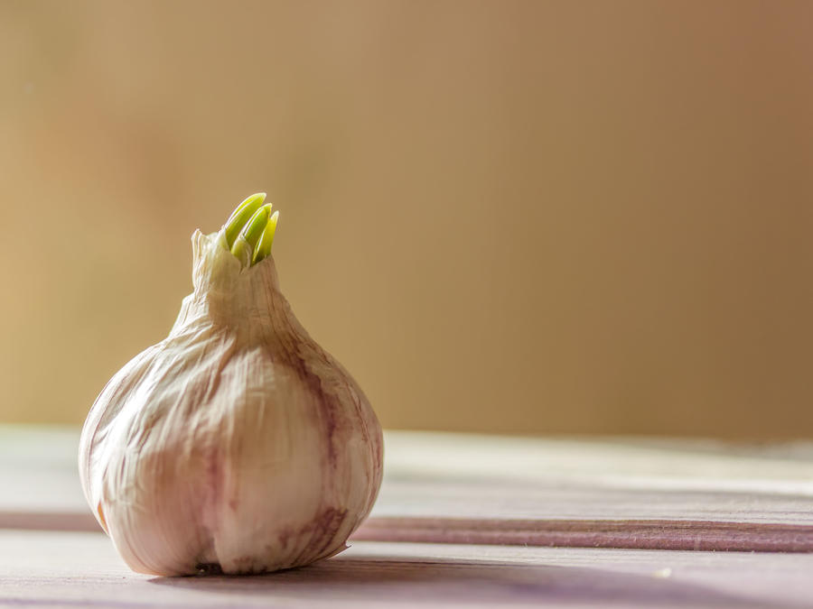 Why You Should Really Plant Garlic ASAP - Cooking Light