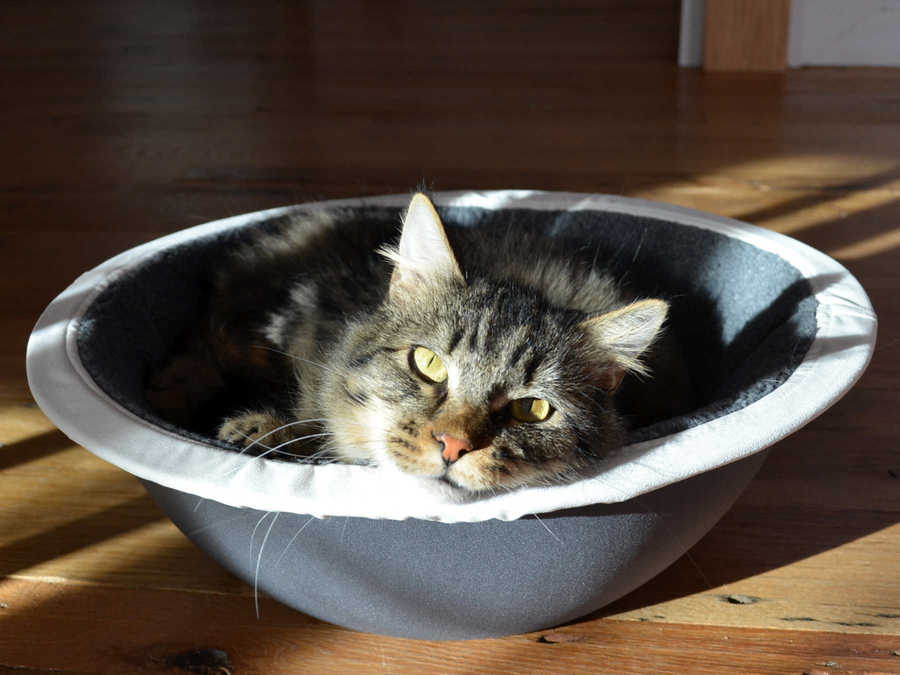 Hepper Nest Cat Bed
