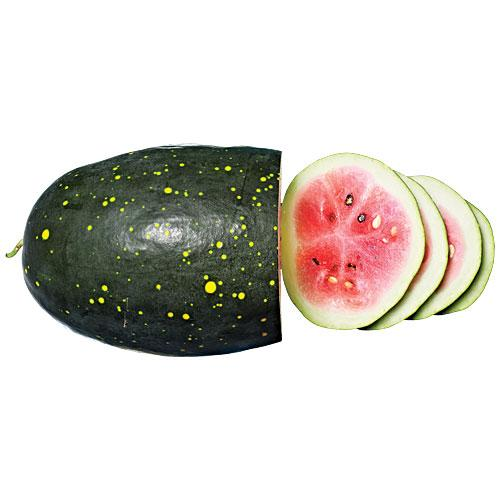Moon and Stars Melons