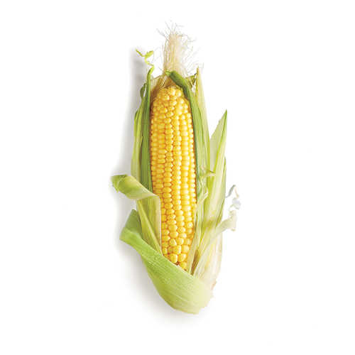 Why It Matters What Time to Buy Sweet Corn