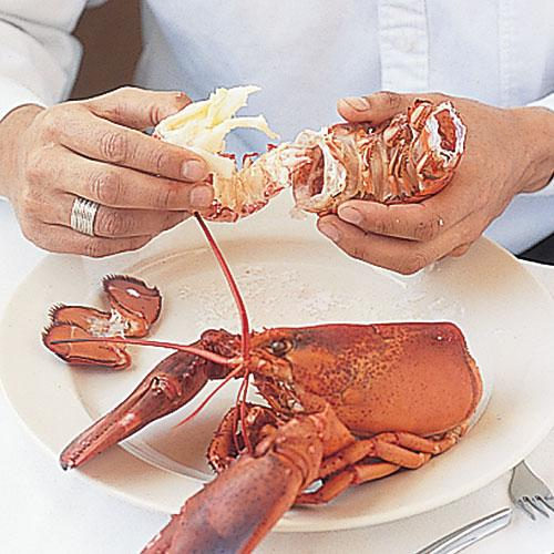 Extracting Lobster Meat: Snap Off Flippers