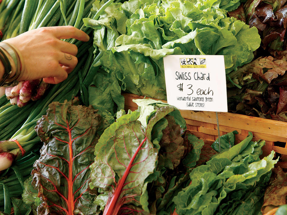 Swiss Chard from Blooming Glen Farms