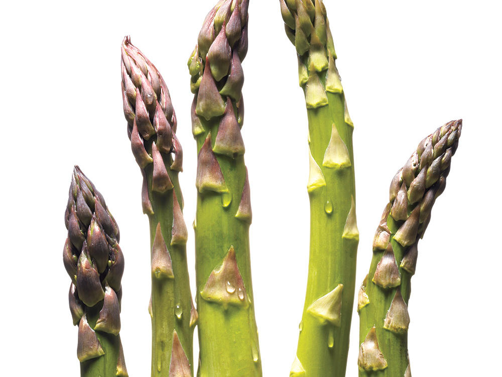 Guide to Asparagus - Cooking Light