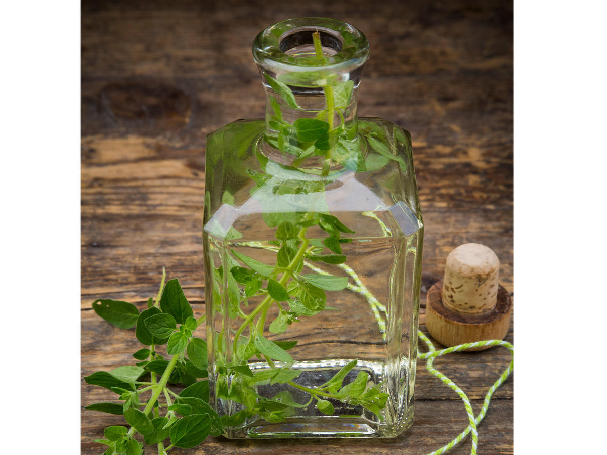 Is Oregano Oil Good for Your Health?