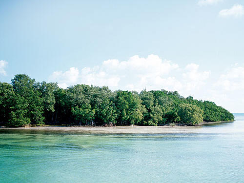 Enjoy the beautiful beaches and water at Key West.