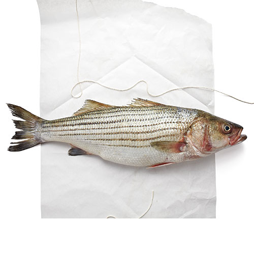 How to fillet a fish cooking light for Bass fish cooking