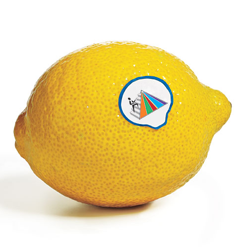 Food pyramid sticker on lemon